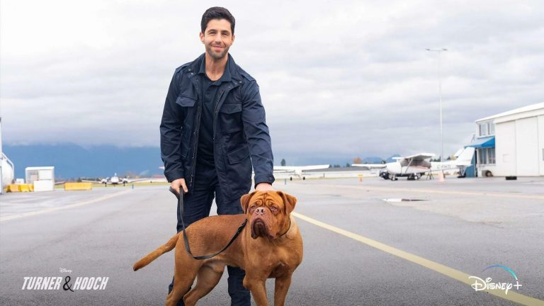 Will There Be Turner & Hooch Season 2?